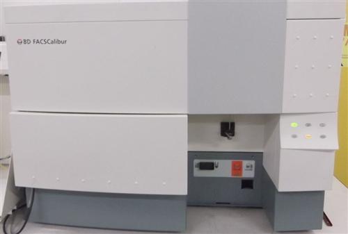 Bd Facscalibur 2 Laser 4 Color Flow Cytometer Marshall